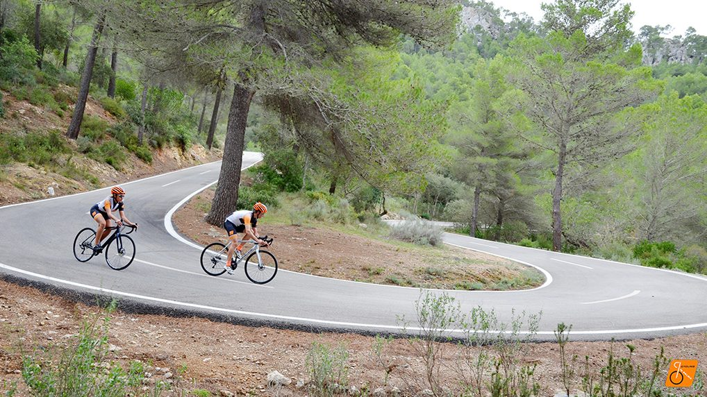 Galilea Bike Tour Mallorca